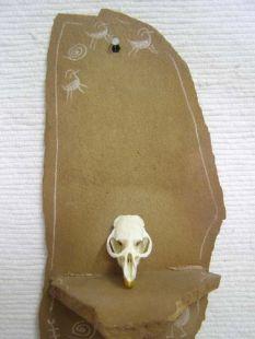Animal Skull - Muskrat