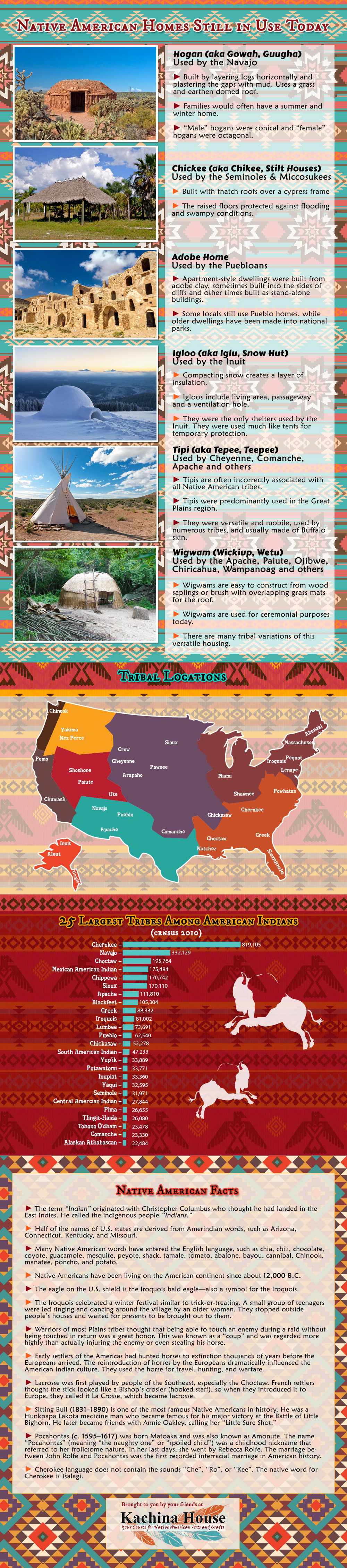 Native American Homes Infographic